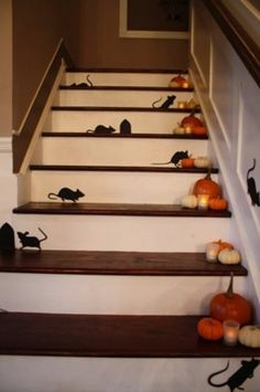 2015 Indoor Halloween Decoration Ideas 11